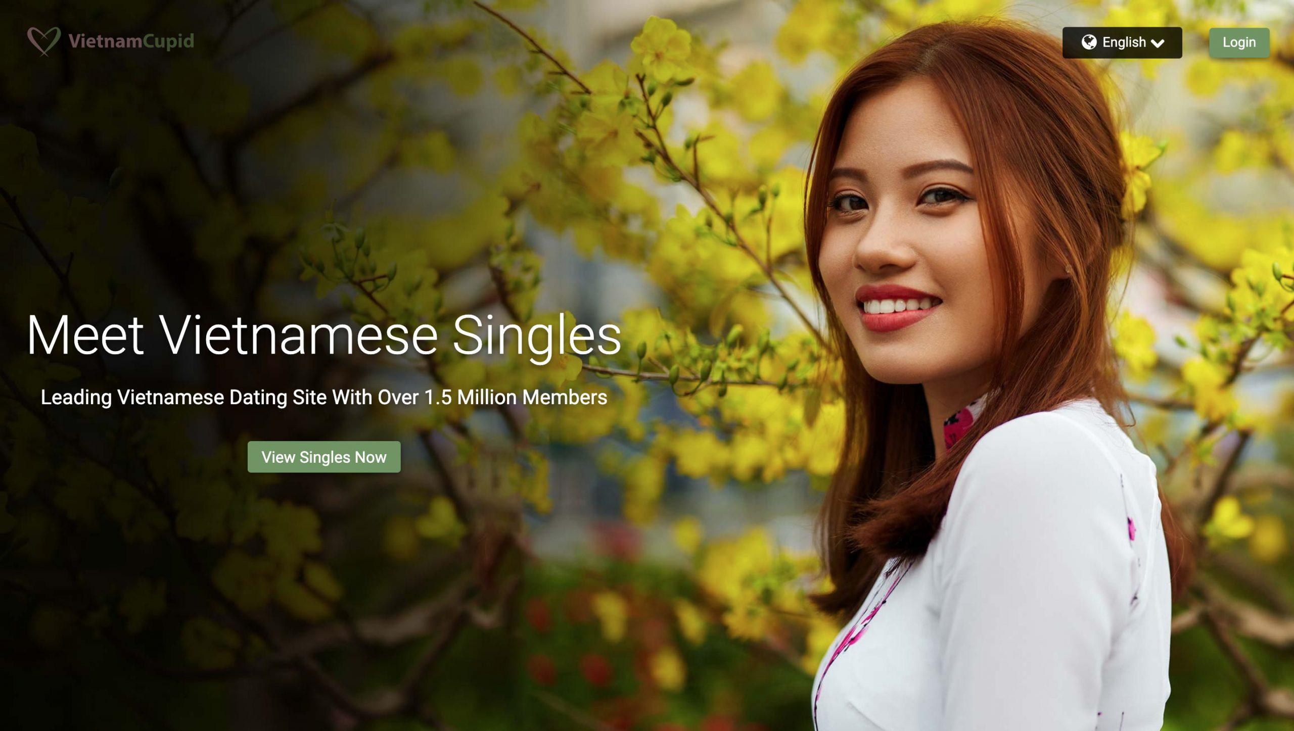 VietnamCupid main page